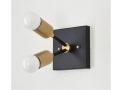 Matte Black and Brass Gold Wall Sconce Vanity 2 Bulb