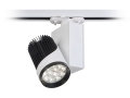 12x3w Ray Tipi Led Spot